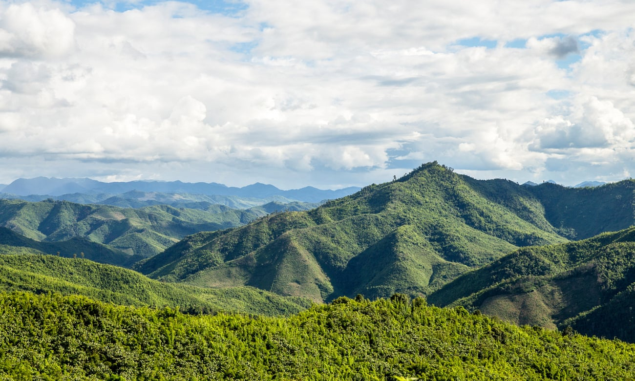 Tigers forever: a wildlife hike in north-east Laos