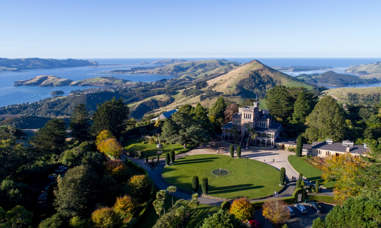 Bellbirds, books and baroque architecture: visiting New Zealand's oldest city Dunedin