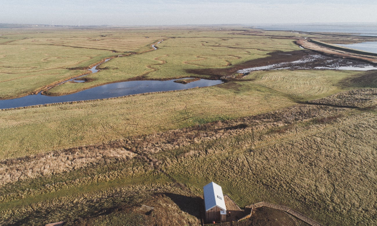 Elmley Nature Reserve, Kent: a peaceful retreat on the Isle of Sheppey