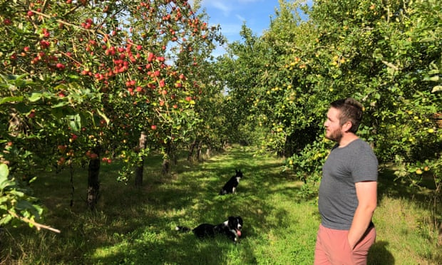 Big on apples: a cider (and perry) tour of Herefordshire